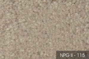 2NPGII-115-54