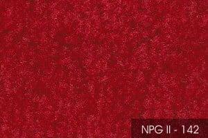 2NPGII-142-54