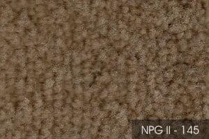 2NPGII-145-54