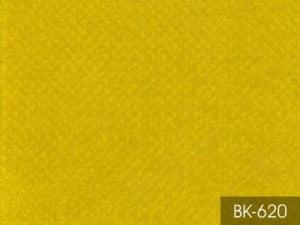BK620-611